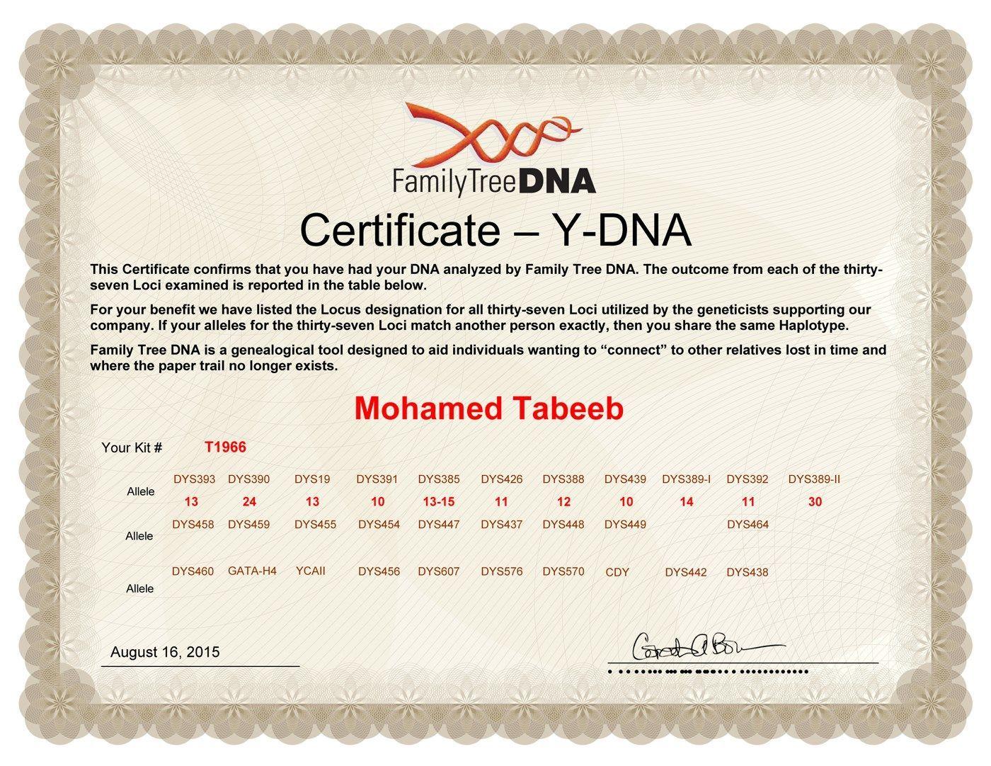 ظهور نتيجة العينة T1966 من عائلة الطبيب من مدينة مسلاتة - بني مسلم