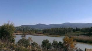 بحيرة وشتاتة شمال تونس