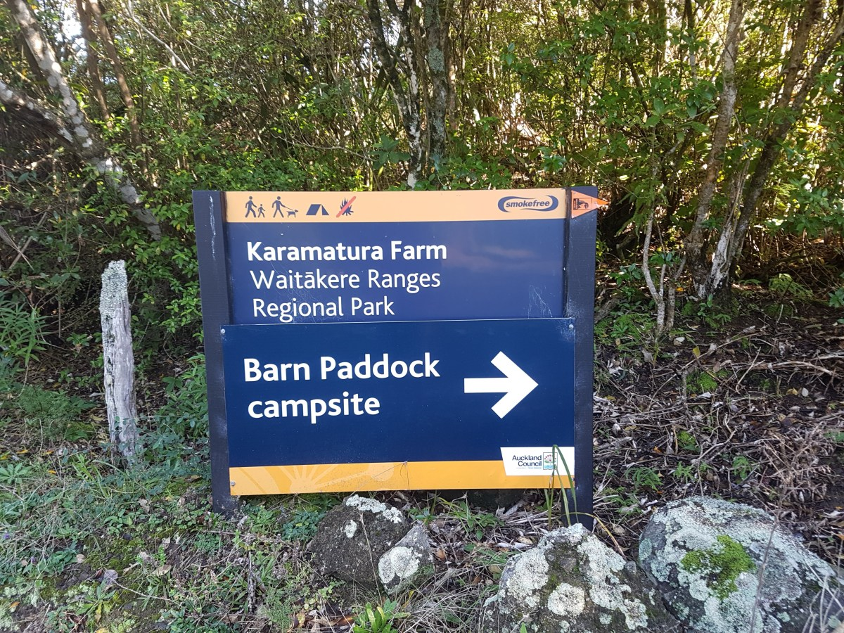 Camping - Cornwallis - Auckland