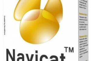 Navicat Premium 15.0.25 Crack Plus License Key [Latest] Free Download