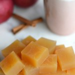 Apple Cider Gummies (AIP/Paleo)