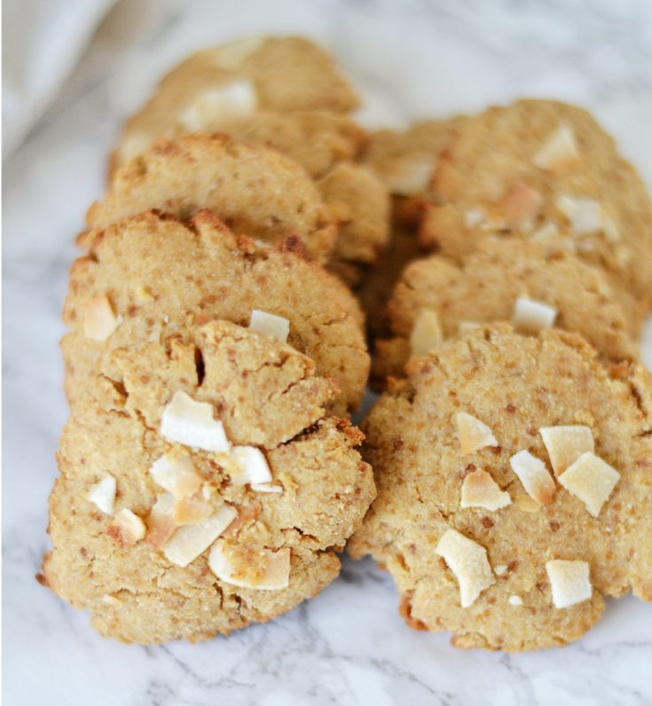 Coconut Cookies (AIP/Paleo/Low Carb)