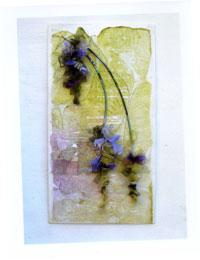 Wisteria by Helen Appleby