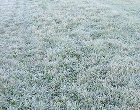 A frost-covered pitch