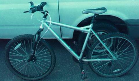 The Muddyfox Vibe bike