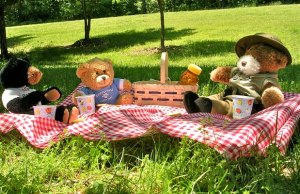 Teddy Bears' Picnic. Pic: Virginia State Parks