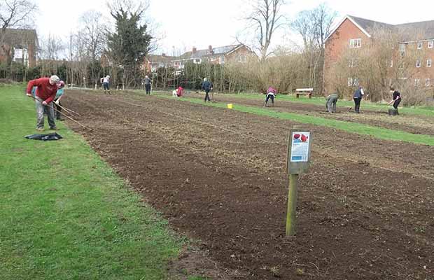 Volunteers sowing poppy seeds in Beacon Park
