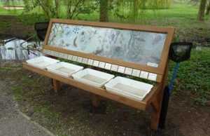 A pond dipping board in Beacon Park