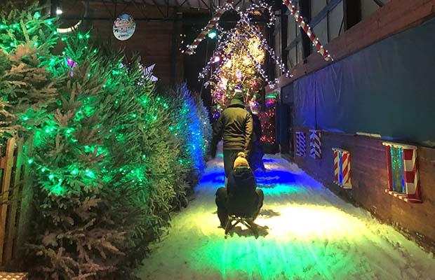 Christmas at the Snowdome