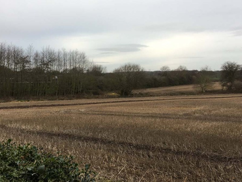 Part of the land which could be moved out of the Green Belt