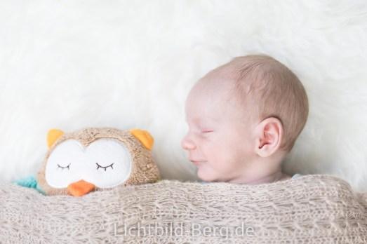 Baby&Familie-Paulin Berg