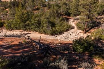 Auch hier: Ausgetrocknete Flussbetten