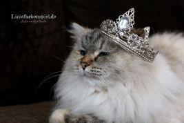 Schneekönigin Kathinka