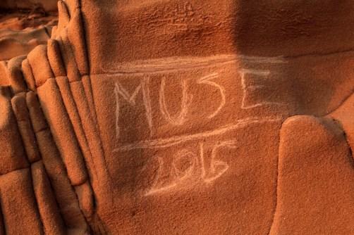 Muse 2015