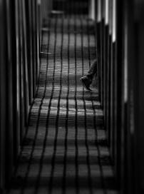 Klaus-Peter Kubik - Shadows of the Past