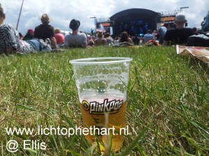 Pinkpop en andere festivals