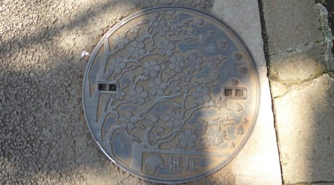 上野花見 上野公園~日比谷公園
