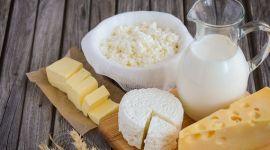 Украина сократила экспорт молочных продуктов на 9%