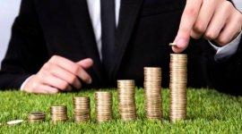 Правительство Молдовы увеличит объем финансовой поддержки фермеров