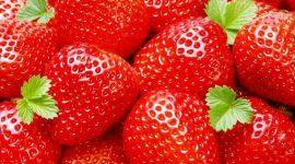 Грант молдавским компаниям для экспорта клубники и биозлаков на рынок ЕС