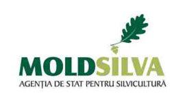 Агентство MOLDSILVA запретило сбор редких весенних цветов