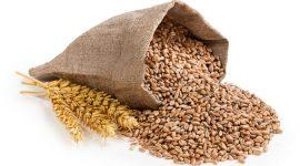 Экспорт зерновых из Украины в 2017 г. снизится на 10%
