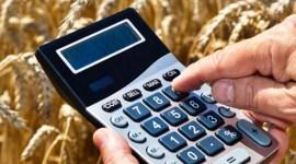 AIPA отчиталось о субсидиях за 2017 год