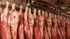 Мировое производство свинины может вырасти в 2018