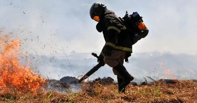 'Queima controlada' no Pantanal segue suspensa até 30 de outubro