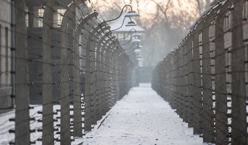 Era más delgado; precisaba menos para vivir: superviviente de Auschwitz