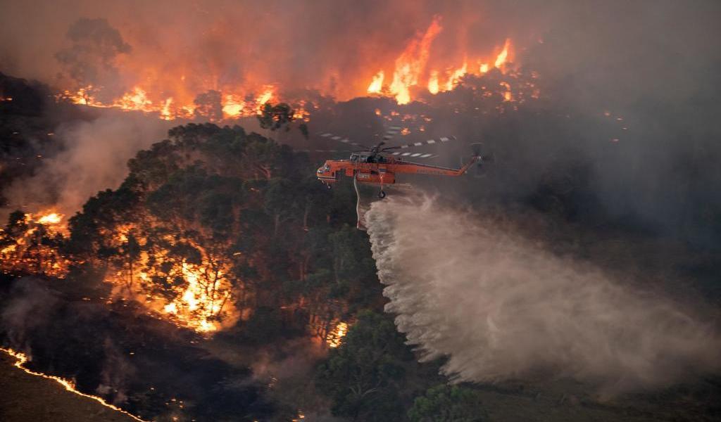 Incendios en Australia no fueron provocados: Greenpeace