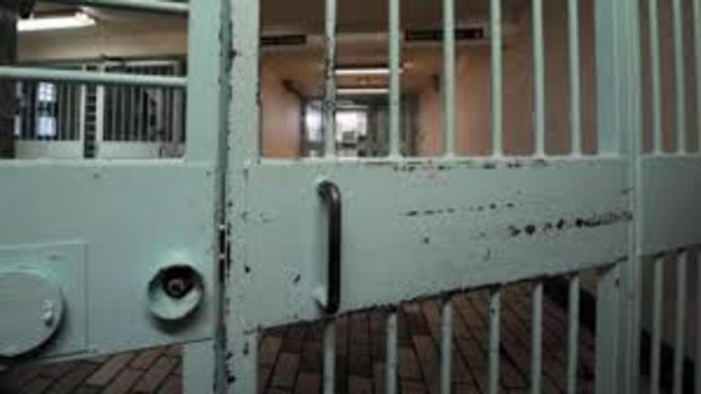 Dan prisión a ambientalistas en Irán