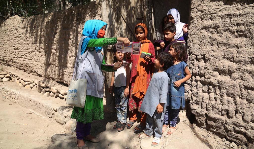 Pide OTAN a talibanes un alto el fuego humanitario en Afganistán