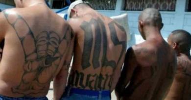EUA acusa por primera vez de terrorismo a miembro de la pandilla MS-13