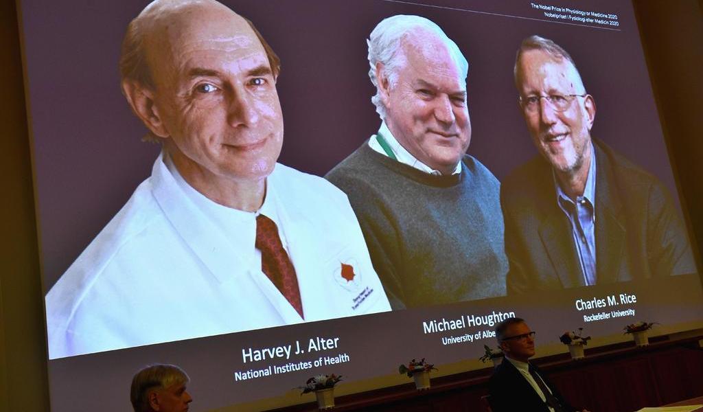 Otorgan Nobel de Medicina a virólogos por descubrir el virus de la hepatitis C