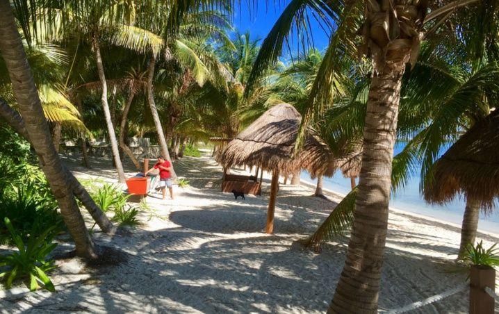Cancún: Playas Limpias de Sargazo hoy 18 de mayo de 2020