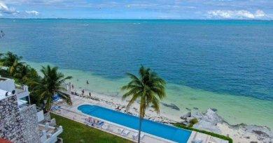 Cancún: Playas Limpias de Sargazo hoy 25 de junio de 2020