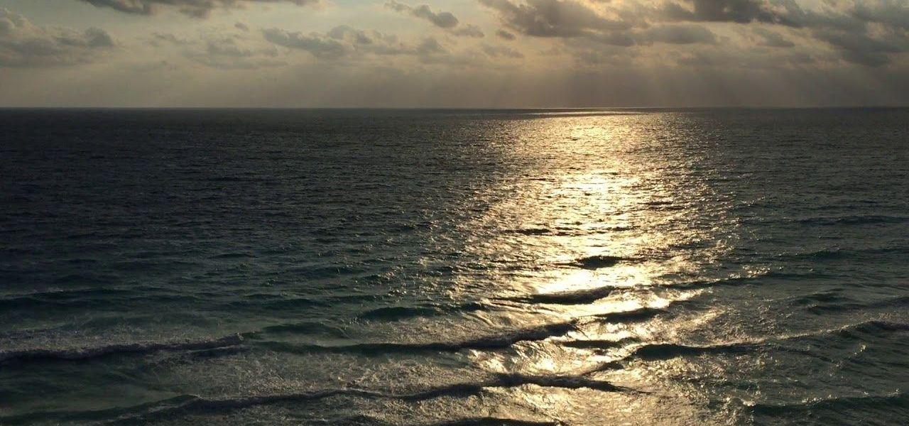 Cancún: Playas Limpias de Sargazo hoy 6 de marzo 2020