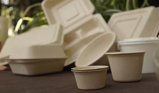 Ambientalistas en QRoo crean composta comunitaria para productos biodegradables