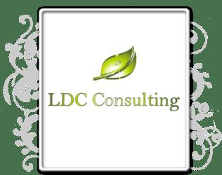 LDC Consulting