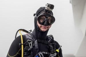 duiker portret duiken zeelandbrug zeeland fotografie