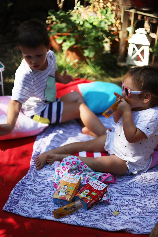 Hipp Eiszapfen Kinder Produkte