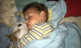 Einschlafprobleme bei Kindern