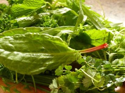 Kräuter für Frankfurter Grüne Soße
