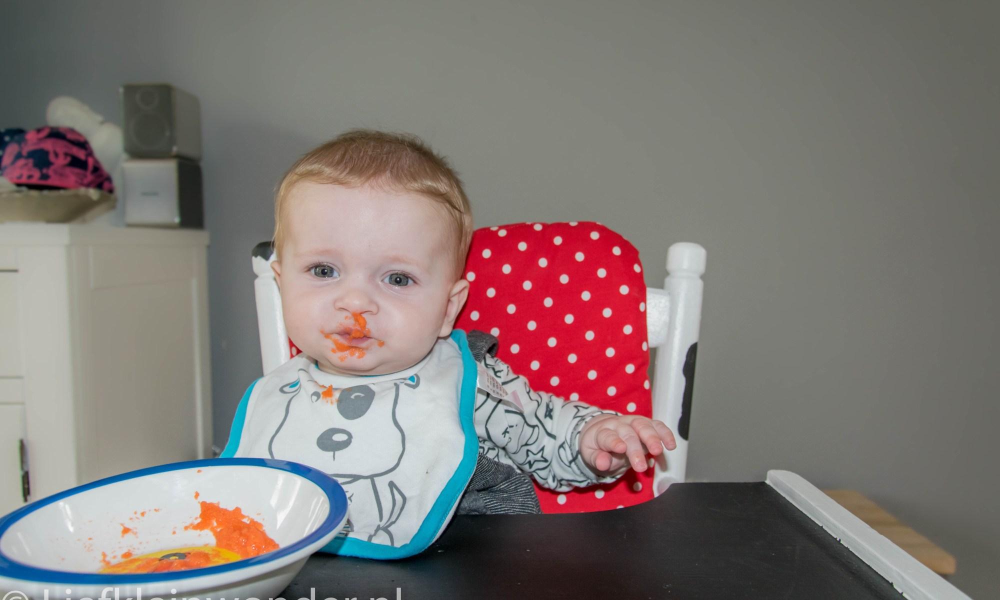 Baby fruithapje wortel