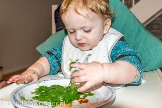 10 maanden en 1 week oud spinazie met aardappels en gehakt shrek drek