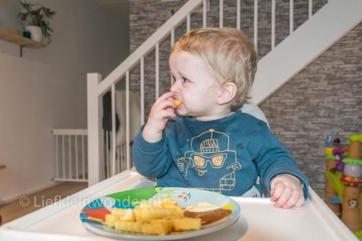 Jayden 15 maanden en 1 week  oud - peuter dreumes patat met mayo en pindasaus