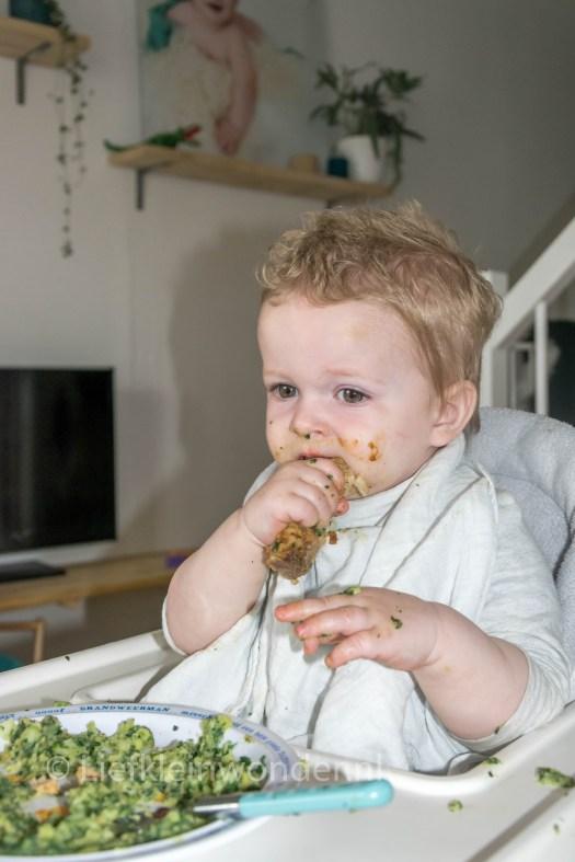 Jayden 15 maanden en 2 weken oud - dreumes spinazie en kluiven aan vlees