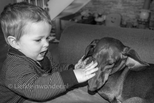 Jayden 15 maanden en 3 weken oud: dreumes Lief voor dieren en speelgoed gooien naar de hond