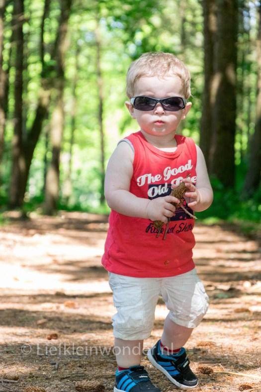 Jayden 17 maanden oud peuter dreumes - Wandelen in het dijkgatbos